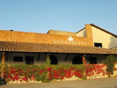 Vino: Lungarotti ancora sul podio con il Rubesco riserva 2013. Per le guide, e' il terzo miglior rosso d'italia dietro Sassicaia e Montiano