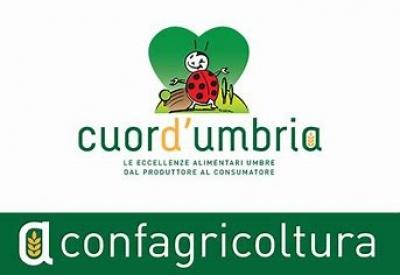 """Coronavirus, Confagricoltura Umbria """"non abbassare la guardia. Non facciamoci trovare impreparati a contenere i contraccolpi economici anche in campo agricolo""""."""