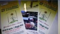 Primavera in Valnerina: mostra giardinaggio/florovivaismo da sabato 28