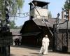 Papa dopo Auschwitz, crudelta' anche oggi, torture e carceri