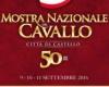 Mostra del Cavallo: 50 anni d'impegno che si identifica con Citta' di Castello