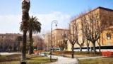 Regione Marche: 30 mila euro per la lotta biologica al punteruolo rosso nella Riviera delle Palme