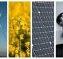 Da PSR; Ass. Morroni, energia pulita per scuole ed edifici pubblici da scarti agricoltura. Promozione filiere sostenibili. 3,4 milioni euro di investimento